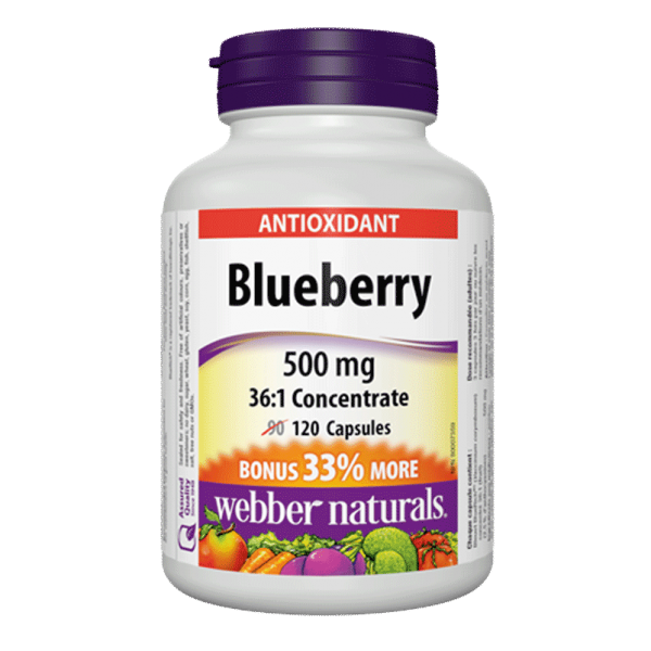 blueberry-500-mg-361-concentrate-120-capsules