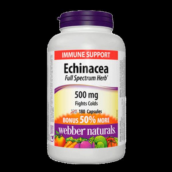 echinacea-500-mg-full-spectrum-herb-180-softgels
