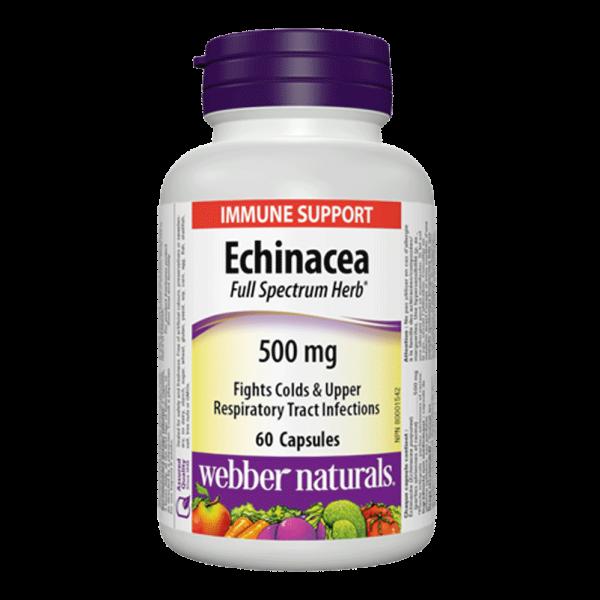 echinacea-500-mg-full-spectrum-herb-60-softgels