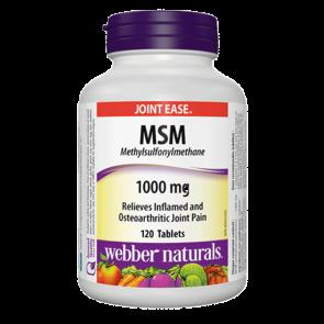 msm-1000-mg-methylsulfonylmethane
